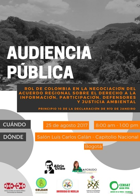 Flyer Audiencia Pública